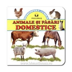 71-612 Animale si pasari domestice