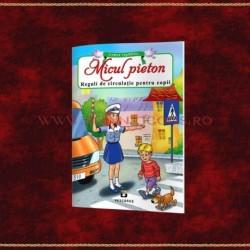 Micul pieton, reguli de circulatie pentru copii