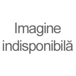 RIPIDE aurite - email - icoana Invierea X29-148